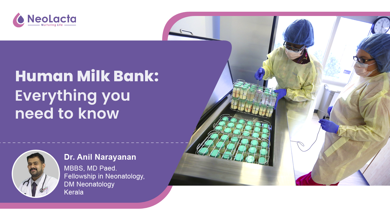 Human Milk Bank: Everything You Need to Know